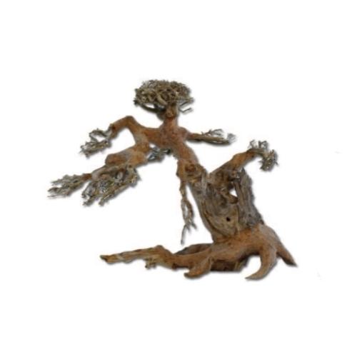 Legno bonsai per aquascaping acquario for Legni per acquario