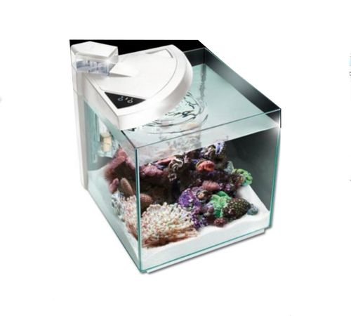 meerwasser aquarien aquarium salz wasser kaufen schweiz. Black Bedroom Furniture Sets. Home Design Ideas