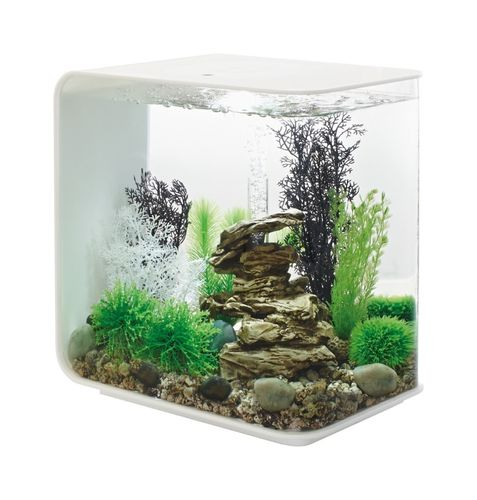 Aquarium biOrb Flow 30 Litres