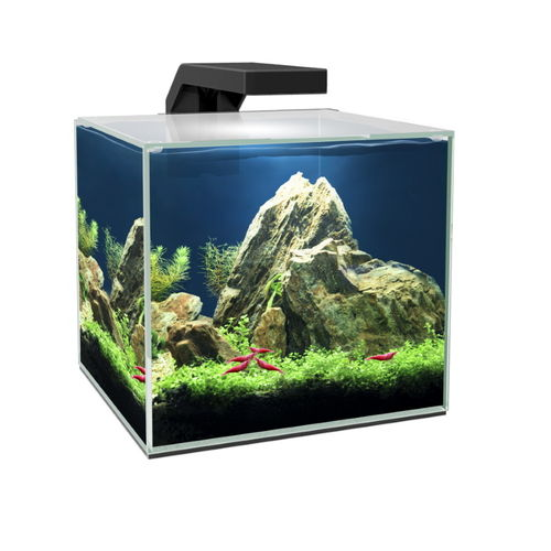 Aquarium Ciano Cube 15 LED